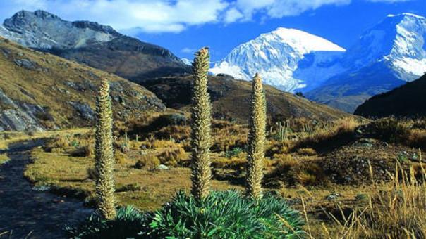 Parque Nacional Huascarán reportó más de 20 mil ingresos durante Semana Santa